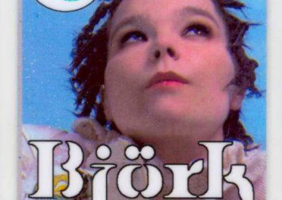 Bjork 2003
