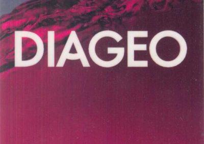 Diageo 2006
